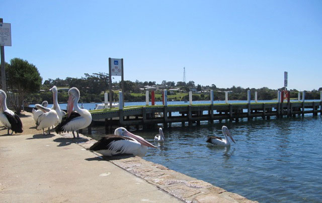 Gowings of Mallacoota